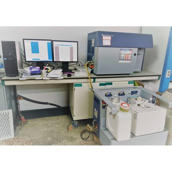 BD Biosciences FACSCanto