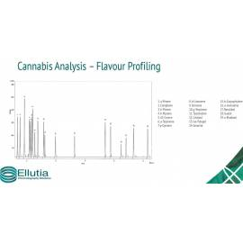 análisis de sabor en cannabis